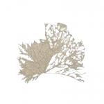 7_14p46x46-leaf-dy.jpg